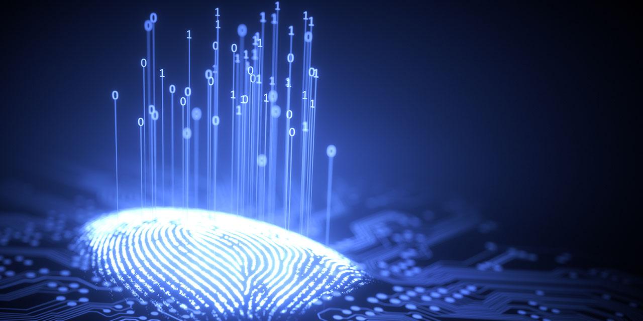 Certificados digitais: o que são e o que sua empresa ganha com eles?