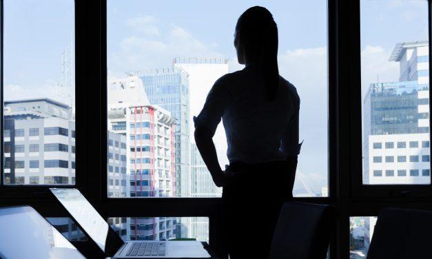 Sociedade Limitada Unipessoal (SLU): Como funciona?