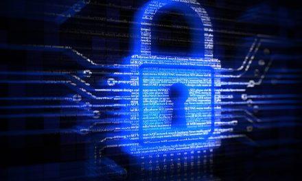 Conheça a importância da segurança digital para sua empresa!